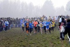 Gara-campestre-a-Guanzate-11-1-2015-012