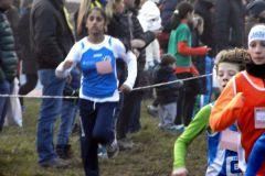 Gara-campestre-a-Guanzate-11-1-2015-013