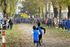 Gara-campestre-a-Turano-9-11-2014-017